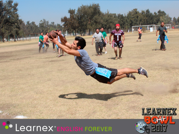 LEARNEX-BOWL-6